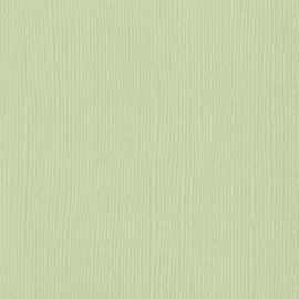 Aloe Vera 12x12 - Bazzill