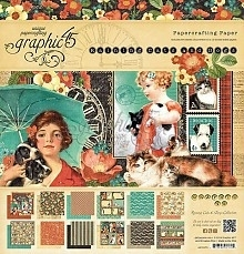 Raining Cats and Dogs Collection 12 x 12 Graphic 45