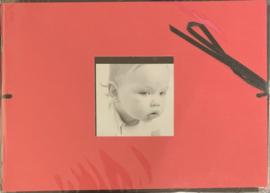 Mini Album Red 5x7 - DCWV