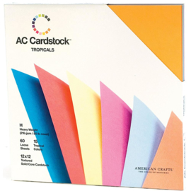 Textured Cardstock Tropicals Value Pack - AC