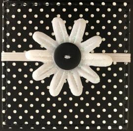 "Accordion Album 3""x3"" Black Doodlebug"
