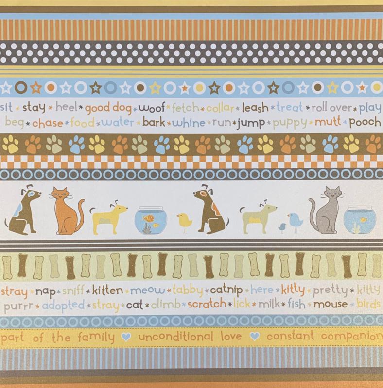 Pet Shop Multi Stripe (Shimmer) - KI Memories