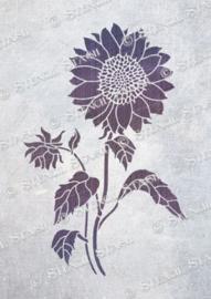 Sunflower no.1