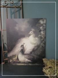 Paneel met Pauw (45 x 55 cm)