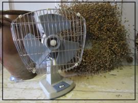 Vintage ventilator - Taurus
