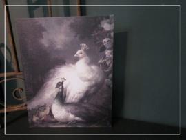 Paneel Pauw (21 x 29 cm)