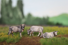 HVP002 Grauvieh set met 3 koeien 1:87