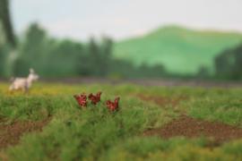 00B05 Rode Eekhoorn 1:76 - 1:42