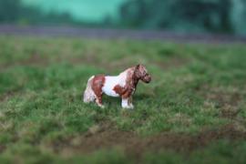 00B17 Shetland Pony 1:76