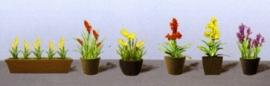 JTT 95567 Assorti potplanten