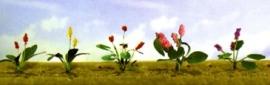 JTT 95561 Assorti bloemen 3