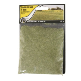 4 mm Static Grass Medium green FS 619