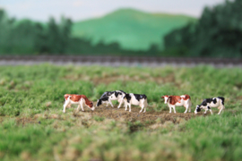 NVPS 202 Holstein zwartbont en Roodbont 1:160