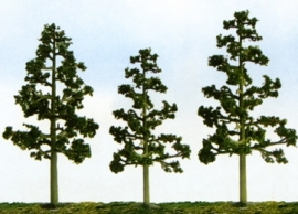 "JTT 92115 ""Lodgepole Pine"" Pijnboom"