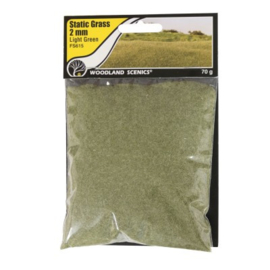 2 mm Static Grass Medium green FS 615