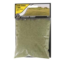 2 mm Static Grass Light green FS 615