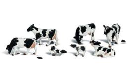 WLS A2724 Holsteiner koeien zwartbont O