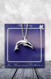 ashanger dolfijn