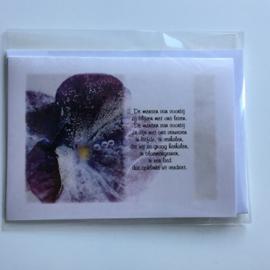 kaart: de mensen van voorbij - bevroren viooltje