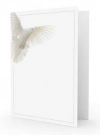 Witte duif - dankbetuiging