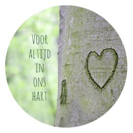 Voor altijd in ons hart  (20cm)