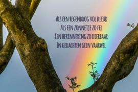 """ansichtkaart """"Als een regenboog zo vel... """""""