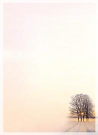 Schaduwbomen - dankbetuigingkaart