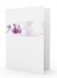 Orchidee in balk - dankbetuigingkaart