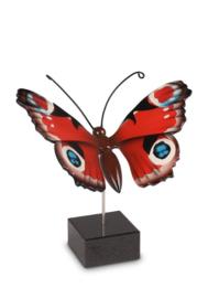 herinnering / as vlinder Dagpauwoog VL196001