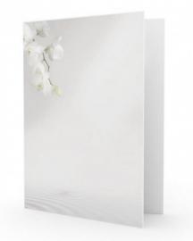 Witte orchidee en water - dankbetuigingkaart