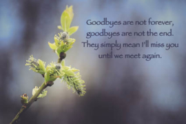 """ansichtkaart """"Goodbyes are not forever"""""""