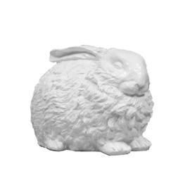 Slapend konijn
