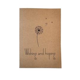 Wish box , wishing and hoping