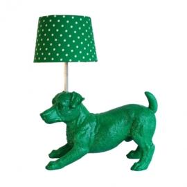 Lamp jack russel