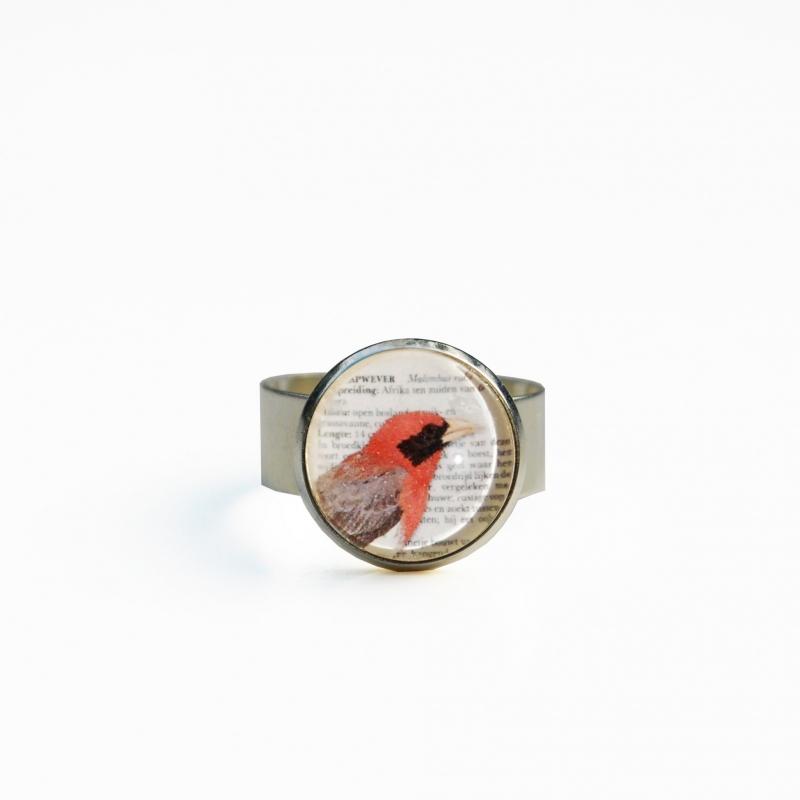 Ring Roodkapwever detail