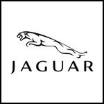 Remblokken Jaguar