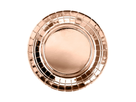 Paper plates rose gold (6pcs)