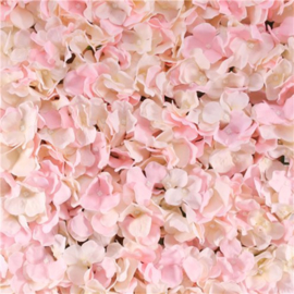 Backdrop flower wall roze