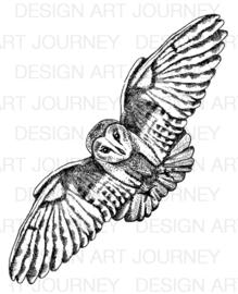 Owl Big 3
