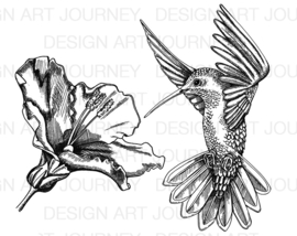 Hummingbird & Flower