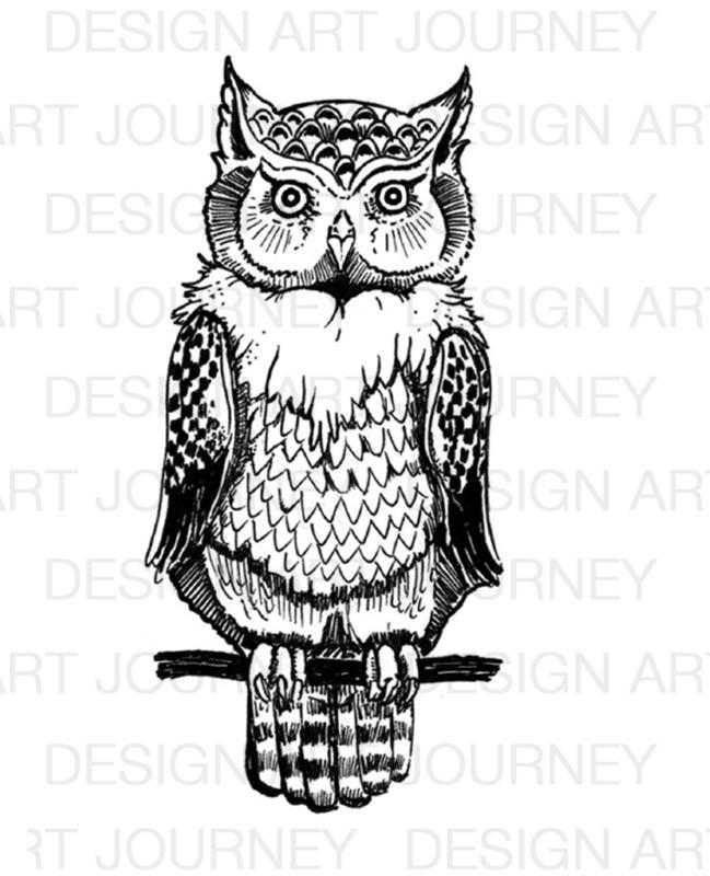 Owl Big 1