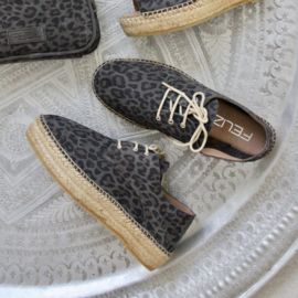Palma leo veter espadrilles in 'Brown'