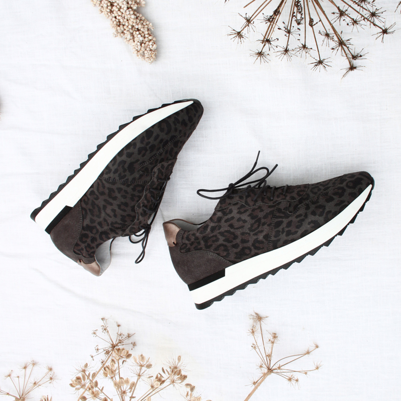 Sadie leo jogger in 'Brown'
