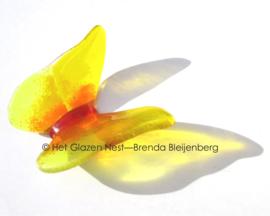 Gele vlinder met oranje accenten