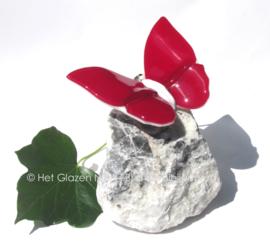 Rode vlinder op witte steen