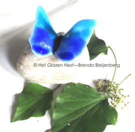vlindertje in aqua en blauw op maaskei