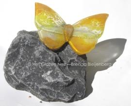 Geelwitte vlinder op basalt