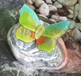 Kleine groen en oker vlinder op steentje