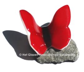 Rode glas vlinder op steentje
