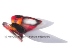 Vlinder in oranje en zwart